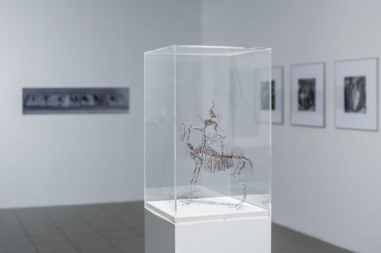 """Katarzyna Kozyra, prototyp """"Piramidy zwierząt"""", 1993. Fot. Radosław Kaźmierczak / Ars Cameralis"""