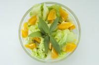 Smakując salata z werbeną