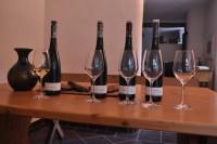 Degustacja rieslinga z różnych siedlisk parceli Marienburg – wina z winnicy Clemensbush. Fot. Norbert Dudziński