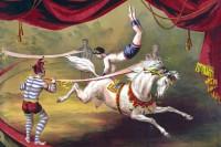 circus-horse-acrobat-painting